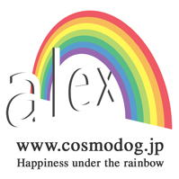 Happiness under the rainbow